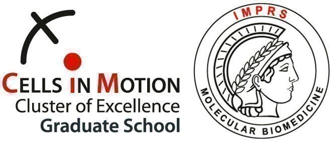 weitere Jobangebote von Cells in Motion Cluster of Excellence