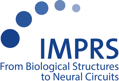 weitere Jobangebote von International Max Planck Research School for Molecular Life Sciences: From Biological Structures to Neural Circuits