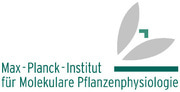 view more open positions at Max Planck Institute of Molecular Plant Physiology