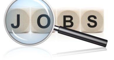 """Eine Lupe untersucht das Wort Jobs. Jeder Buchstabe des Wortes """"Job"""" ist mit einem einzelnen Würfel dargestellt"""